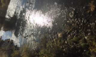 裾花川の写真(常盤撮影)