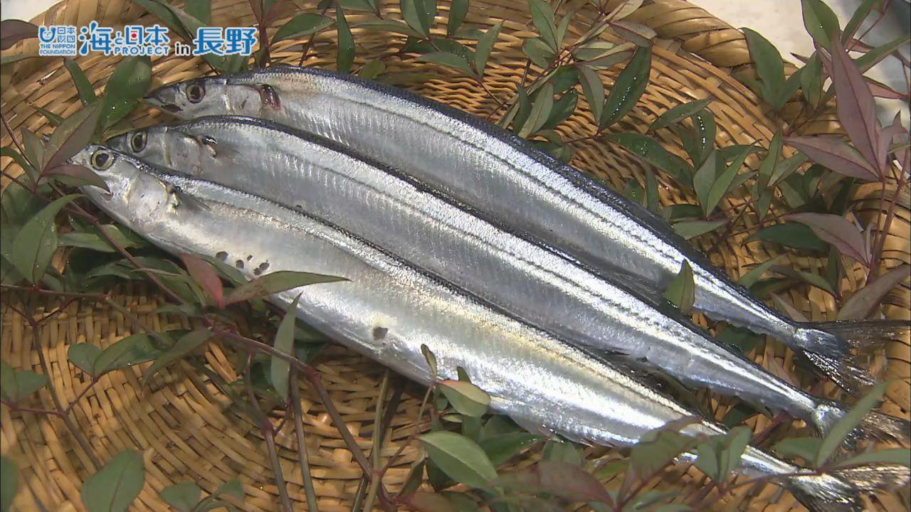 長野県-A27-s2