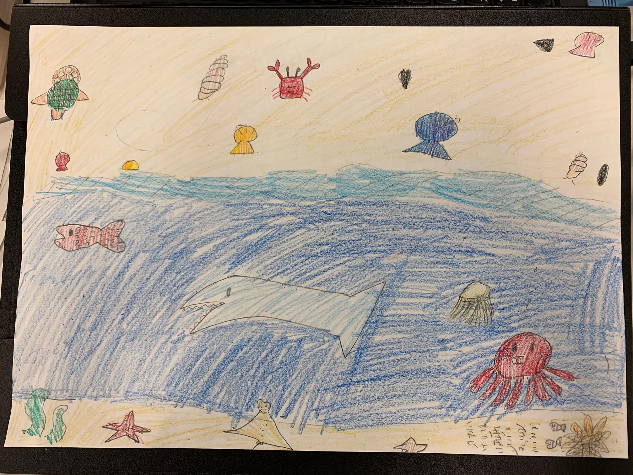 13一色彩花あやか小2須坂市「早く海へ行きたいな!海の生き物たち