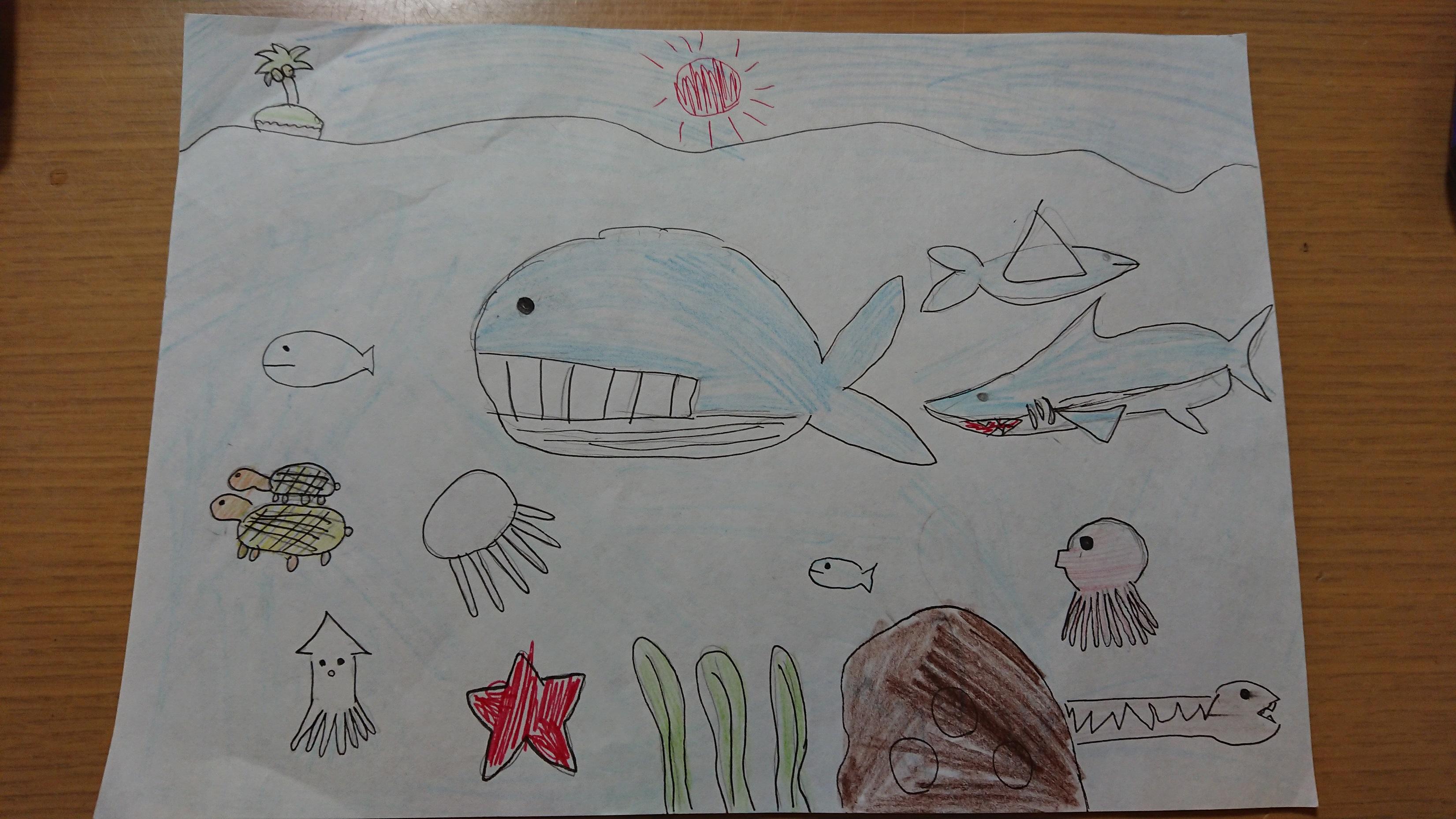17川口結愛(ゆあ)3年海の生き物たくさん探しに行きたい2